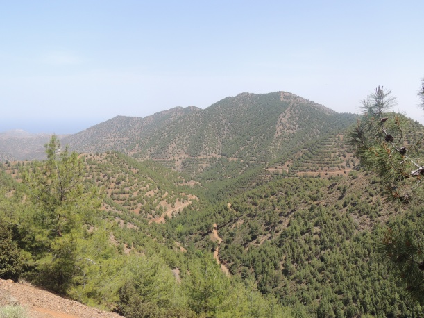 View outside Kampos 4th May 2014 (c) Cyprus Birding Tours