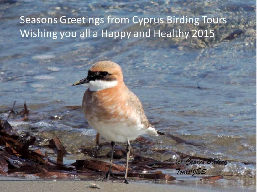Seasons Greetings from Cyprus Birding Tours 2015
